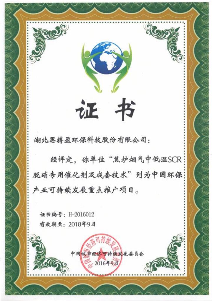 中国环保产业可持续发展推广项目